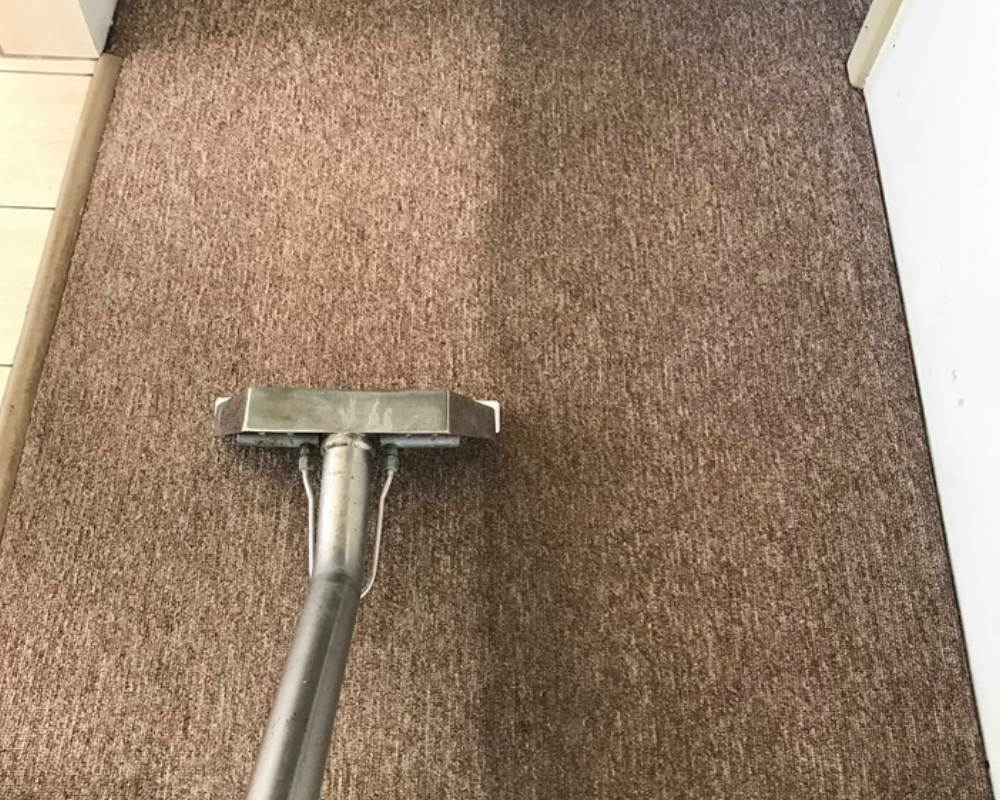 Cleaning your office carpet